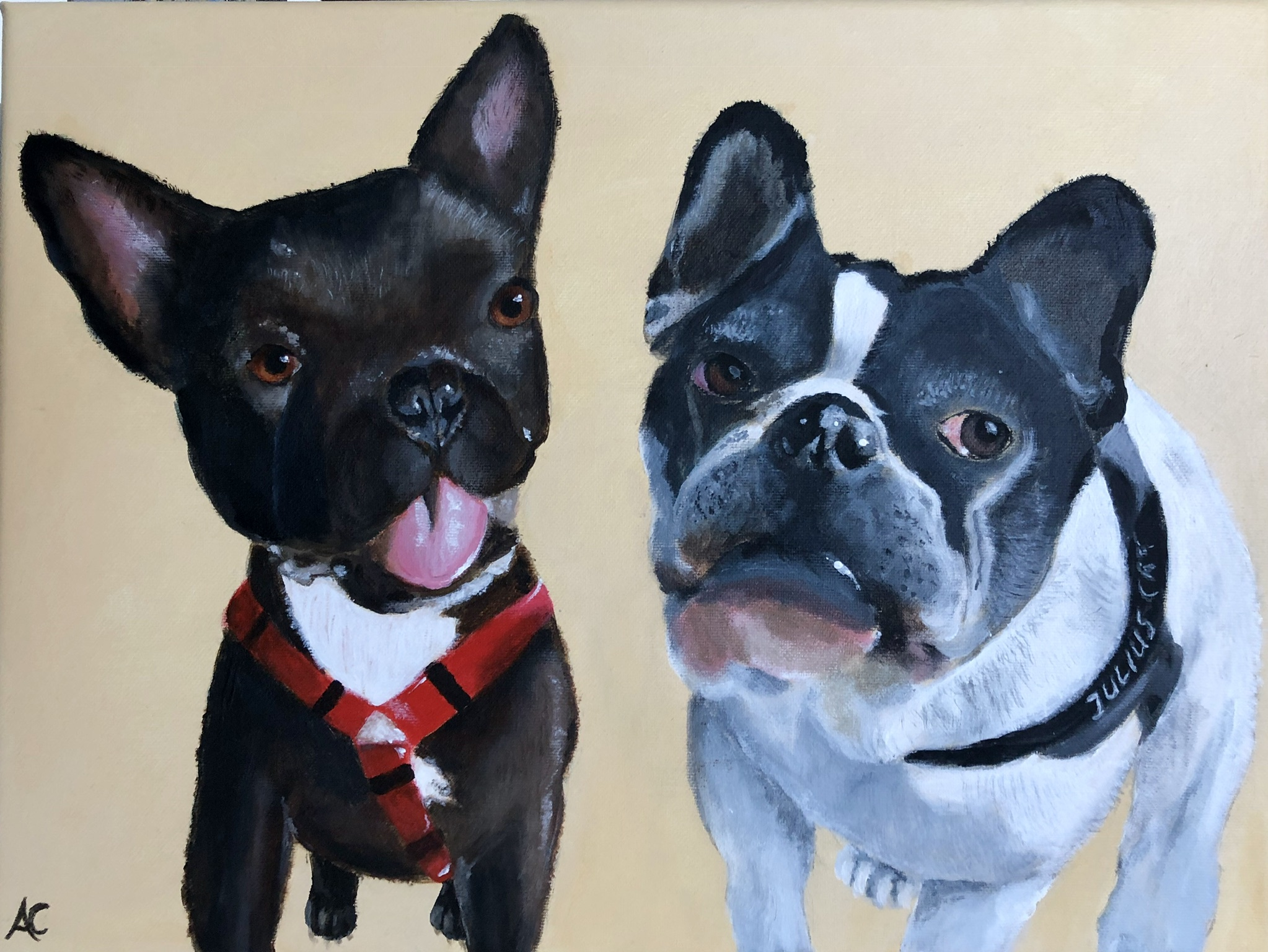 Schilderij | Hummel & Molly