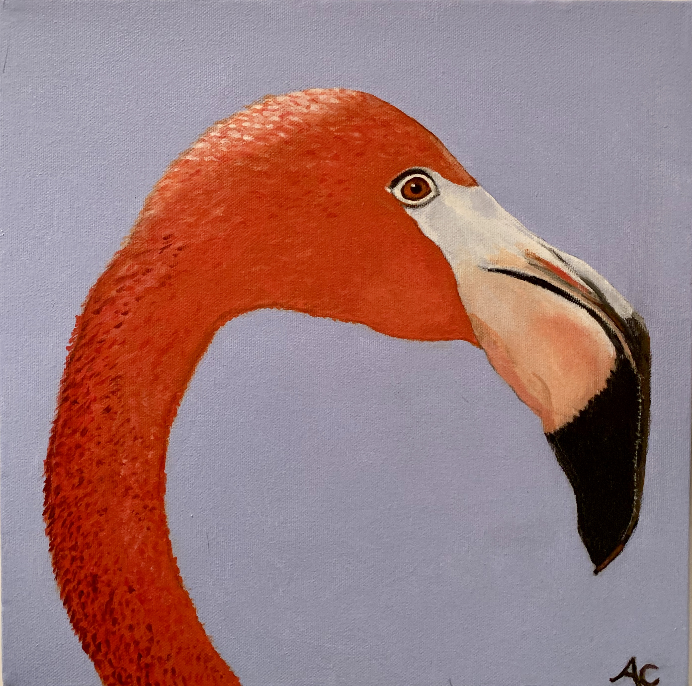 Schilderij | Flamingo | eur 125